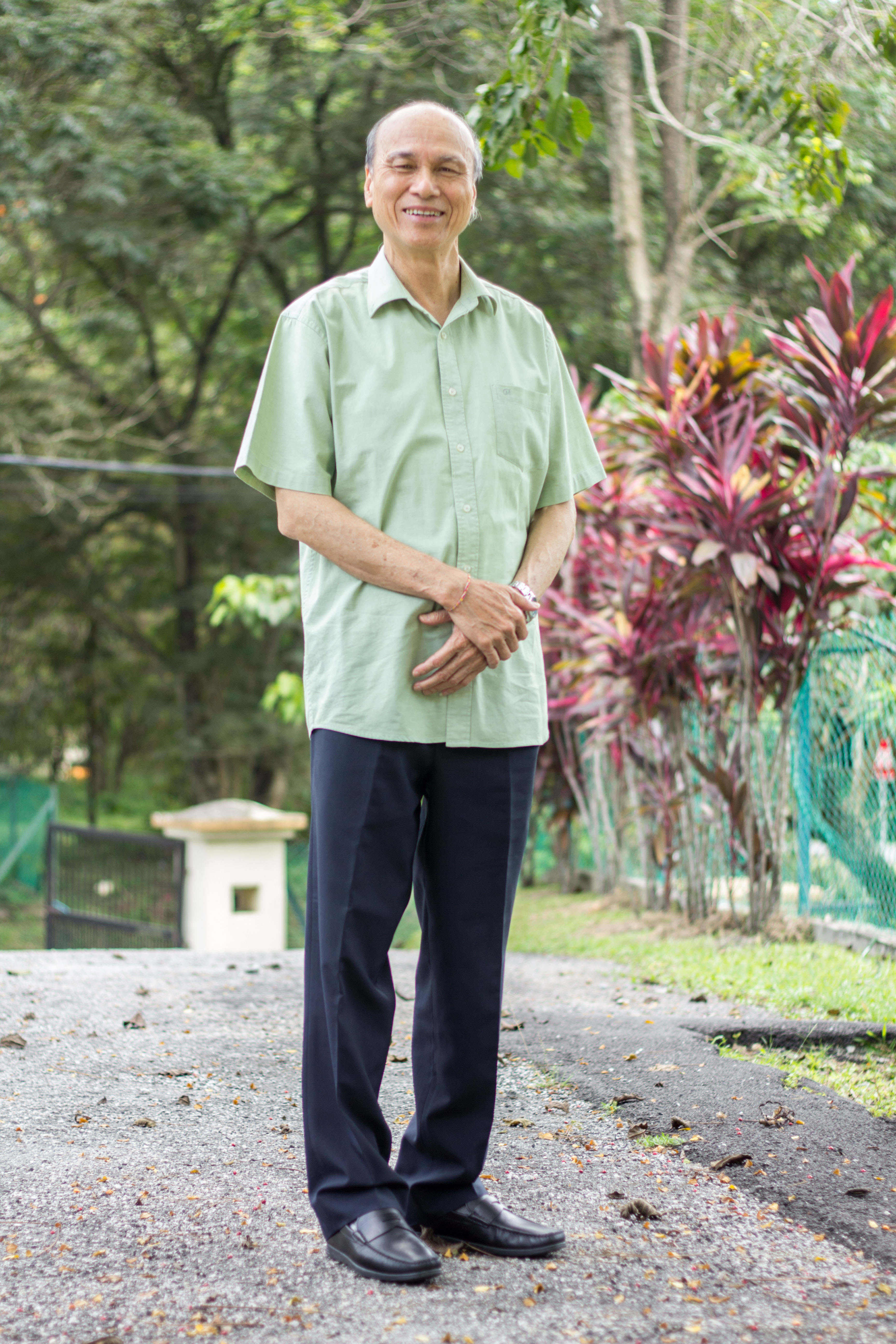 Tan Sri LLT's portrait 2